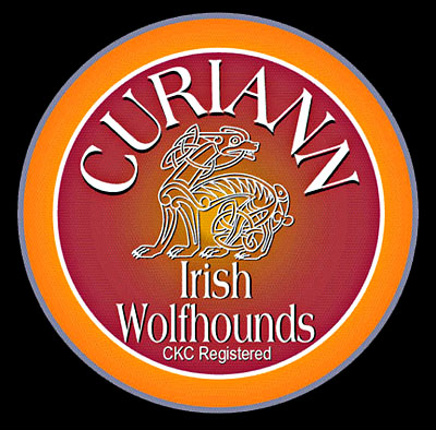 Curiann Irish Wolfhounds